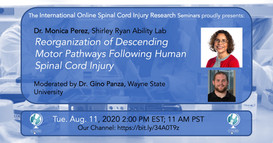 Dr. Monica Perez - Reorganization Of Descending Motor Pathways Following Human Spinal Cord Injury