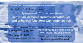 Dr. Veronica Tom - Dy-no-mite!: Chronic neuronal activation increases dynamic microtubules and enhances functional axon regeneration.
