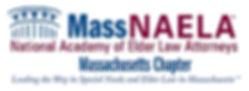new massnaela logo.jpg