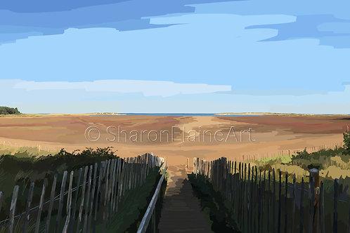 "Holkham Beach ""at its best"""