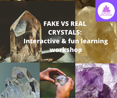 Fake vs real workshop.png