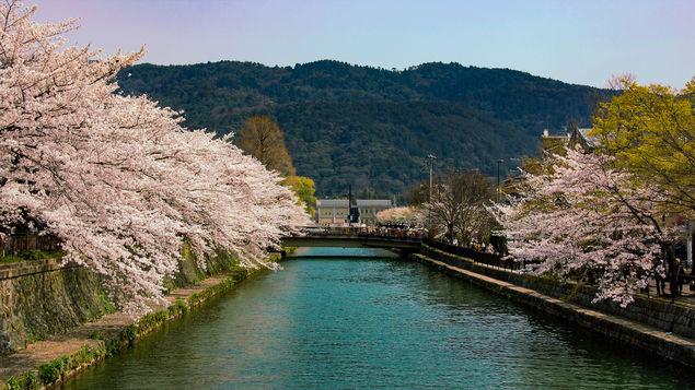 【岡崎エリア】平安神宮や琵琶湖疏水、動物園も!