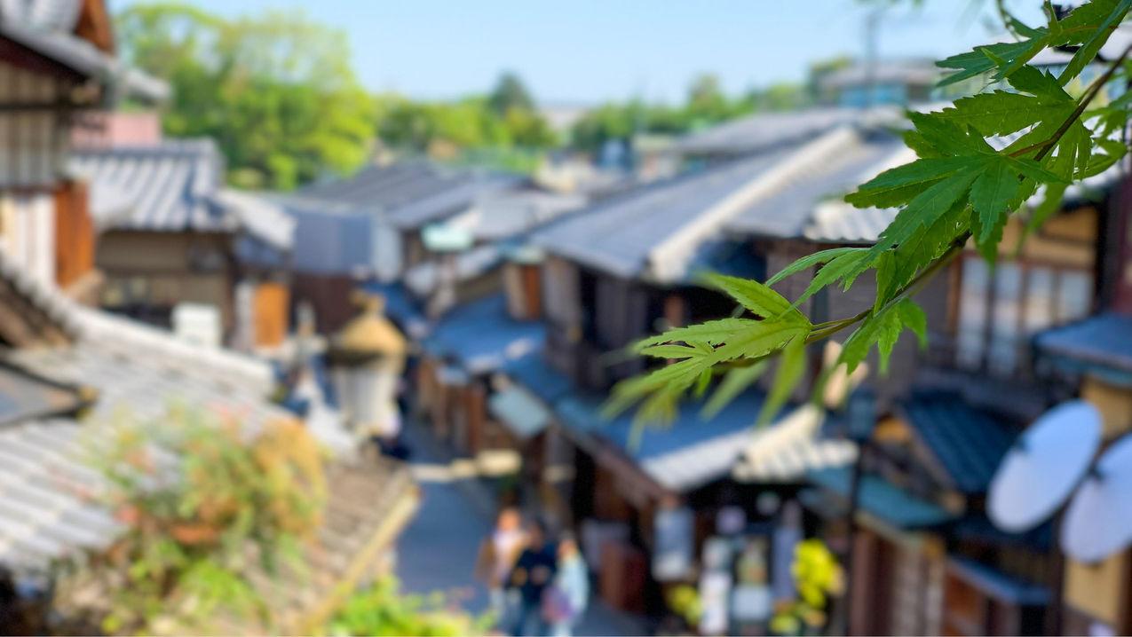 【産寧坂】写真映えする景色!