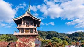 【大雲院】東山に静かに佇む塔、祇園閣。