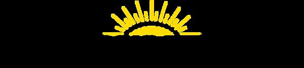 PedagócicaVirtual-logo_negro_800x180.pn