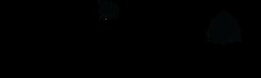 CDI Logo_black.png
