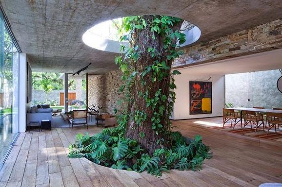 Arquitetura integrada com Árvores