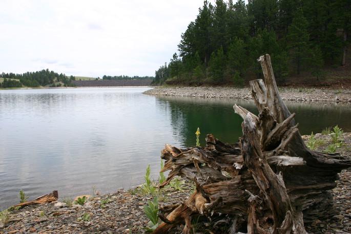Deerfield Lake.jpg