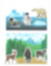 Animal Habitats Playboard.jpg