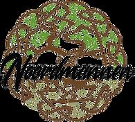 logo Noordmannen kopie.png