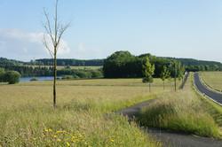 Ausblick Breitenbachtalsperre