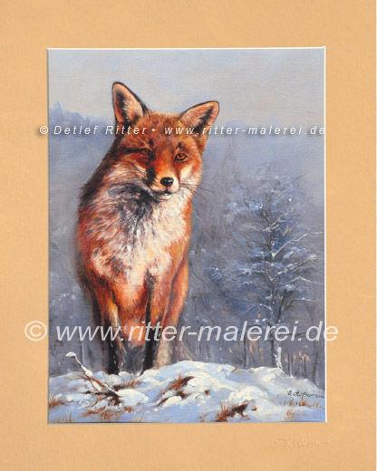 Fuchs-01_g_b.jpg