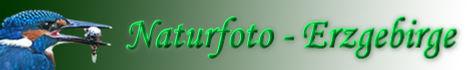 banner_naturfoto_erzgebirge.jpg