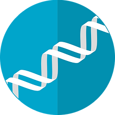 dna-icon-2316641_640.png