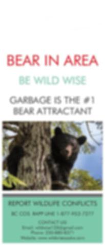 2020 Bear 1.jpg
