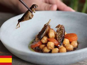 Europa empieza a comer insectos