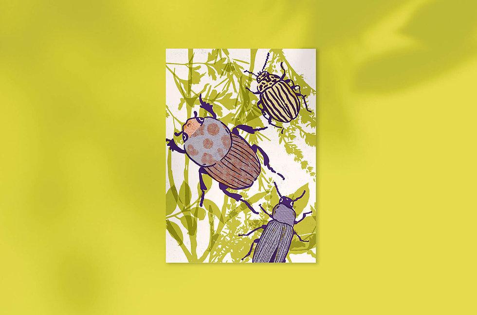 sona-jurikova-obchod-plakat-broucci02.jp
