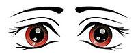 The-eye-complete-set-2_05.jpg
