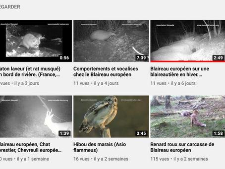 Vidéos d'instants nature !