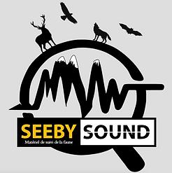 SeeBySound