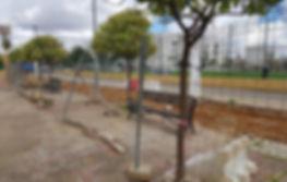 vehiculos_tinte.jpg