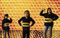 La abeja, nuestra mejor amiga.png