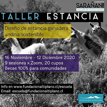 Flayer Taller Estancia.jpg