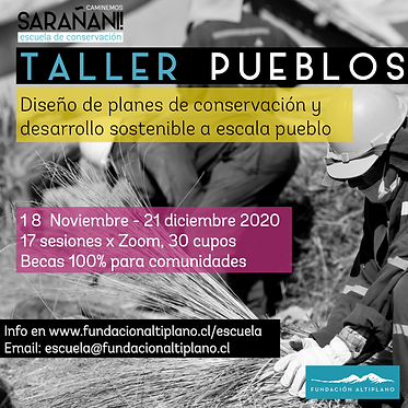Volante Taller Pueblos 2020.png