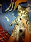Baby Baxter...Awww