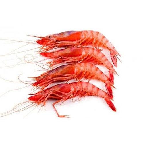 Mmmediterranean Alistado Red Shrimp Box
