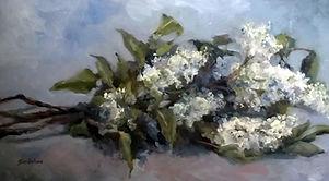 Lilas du jardin