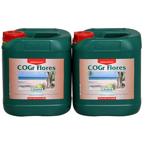 CANNA COGr Flores A+B 2x10L