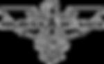 Logo-Adjust-a-wing_Blanc_medium.png