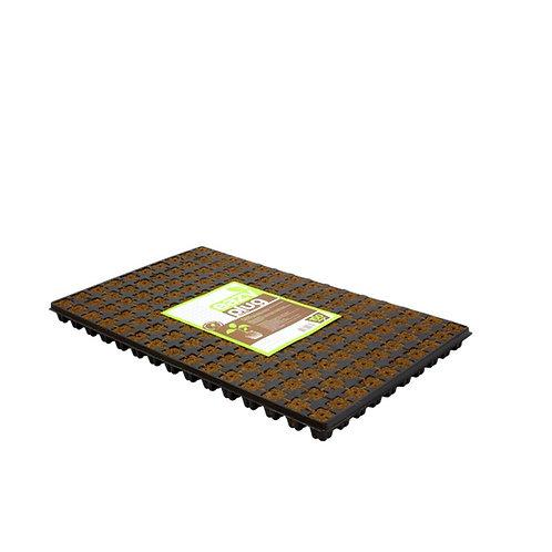 Eazy Plug Stecklingstrays 150Stk.
