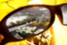 methodsevengrowroomglasses.jpg