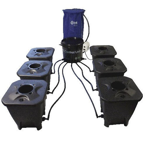 IWS Deep Water Culture System 6 Pot inkl. Flextank 100l