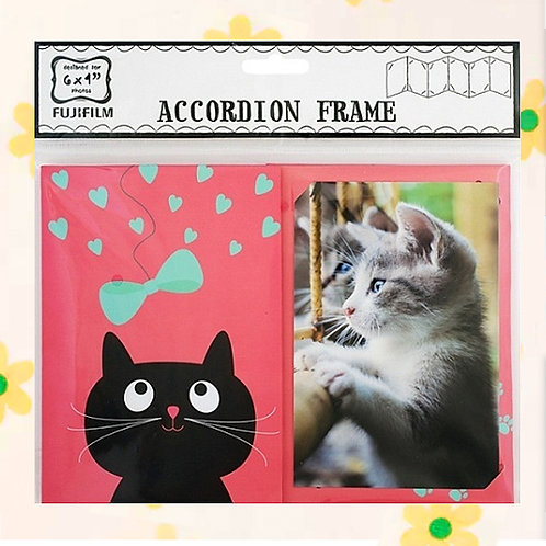 "84746 ACCORDION 6X4"" - CAT"