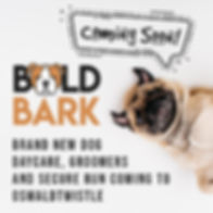 Bold Bark social media posts-01.jpg