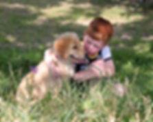 puppy-2194248 PERMITTED.jpg