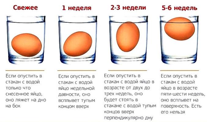 uborka-531-660x452_edited_edited.jpg