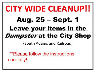 citywide cleanup.jpg