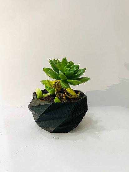 Low poly Planter