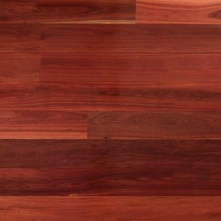 Red Iron Bark.jpg