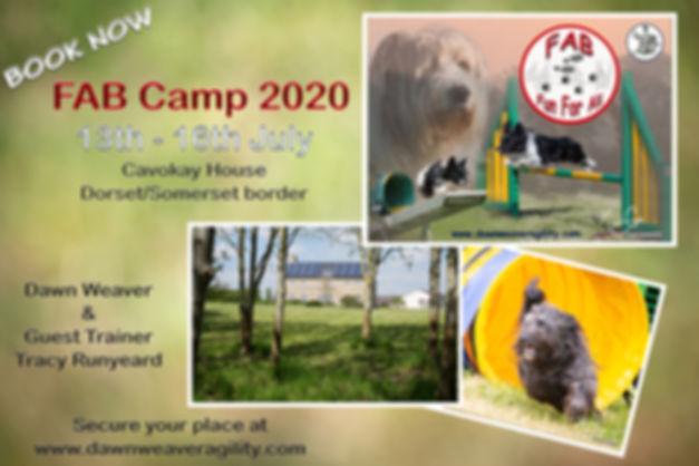 FAB Camp 2020 low.jpg