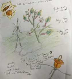 Jitterbug_sketch1