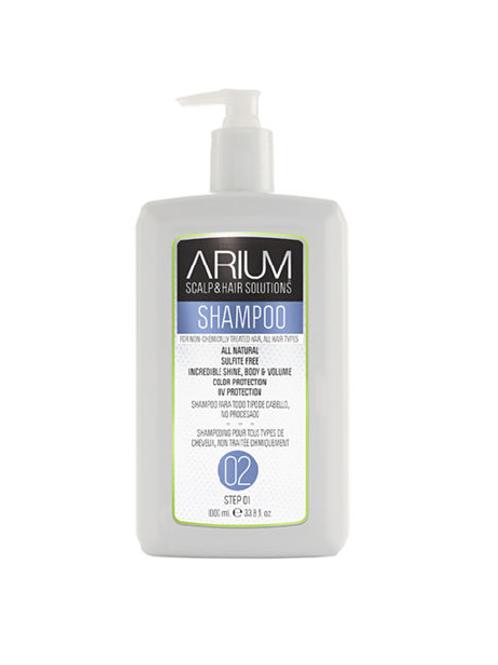 ARIUM SHAMPOO 2 - 1 LITRO