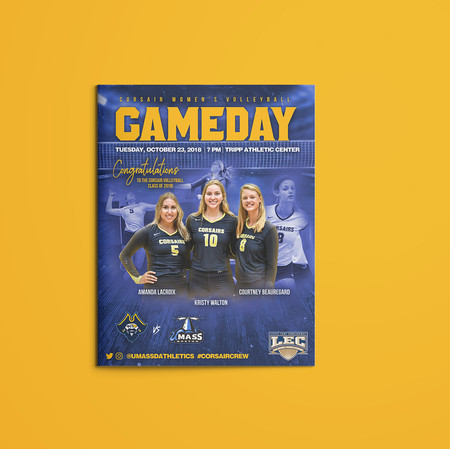Volleyball Gameday