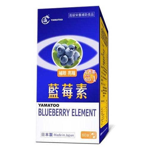 YAMATOO藍莓素60粒