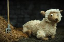 Sheep & Hay
