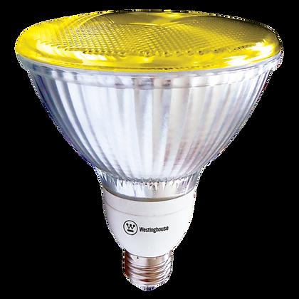 Bulb - COLOR REFLECTOR PAR38